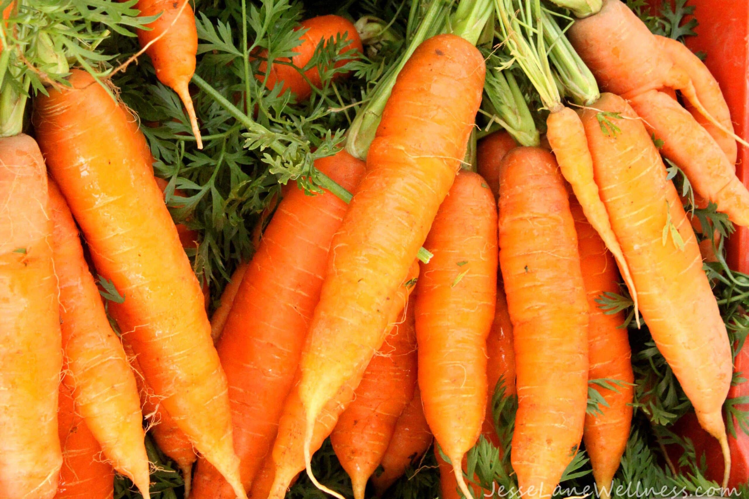 Carrots by @JesseLWellness #carrot