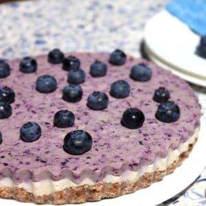 Raw Blueberry Cheesecake by Jesse Lane Wellness