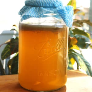 Homemade Kombucha by Jesse Lane Wellness