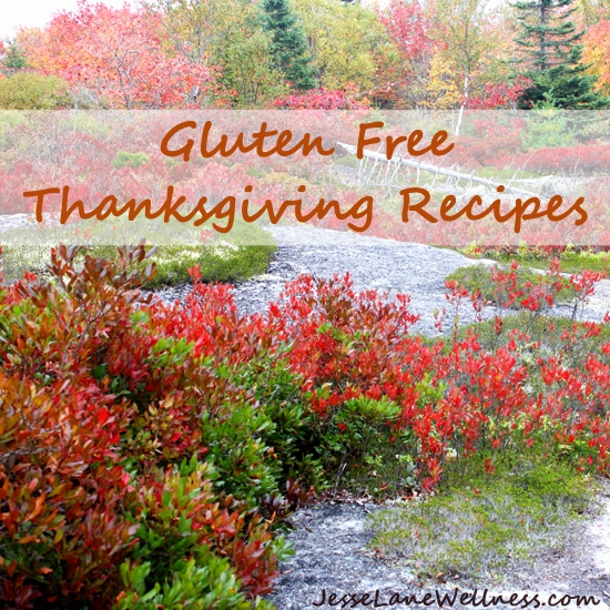 Gluten Free Thanksgiving Recipes by @jesselwellness #glutenfree #Thanksgiving 550