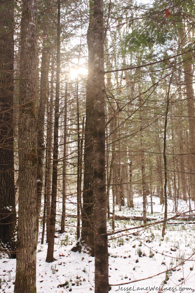 Grail Springs Review by @jesselwellness #nature #hike