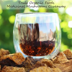 Medicinal Mushroom Benefits and Giveaway with @jesselwellness Chaga Mushrooms Square #chaga #giveaway #win #medicinal