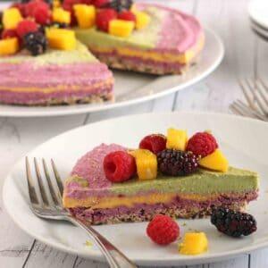 Dairy-Free Rainbow Cheesecake by jesselwellness